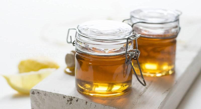 Чи знаєте ви, що мед ефективний як при схудненні, так і для набору ваги!!!
