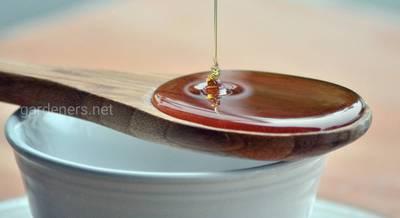 мед и похудение.jpg