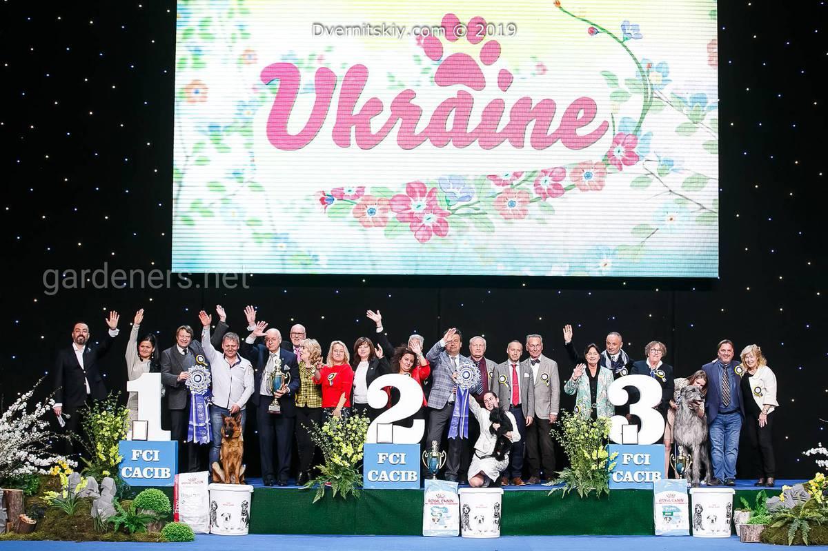 выставки собак 2019 украина