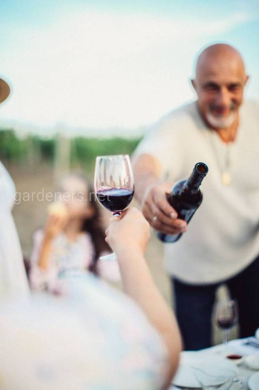 """Натуральне Вино""-""vin méthode nature"""
