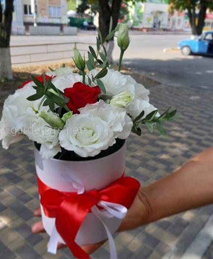 розы,букет