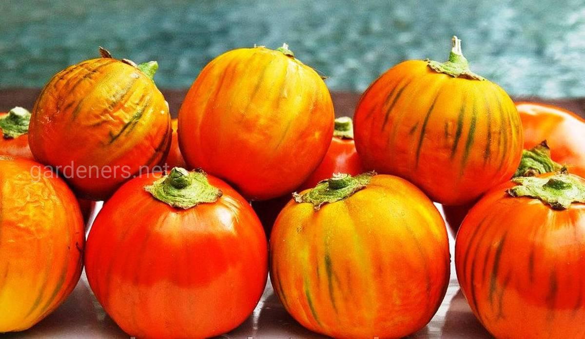 Турецкий оранжевый