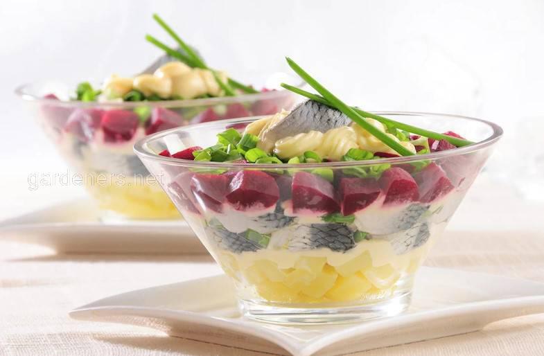 Селёдочный салат со свёклой