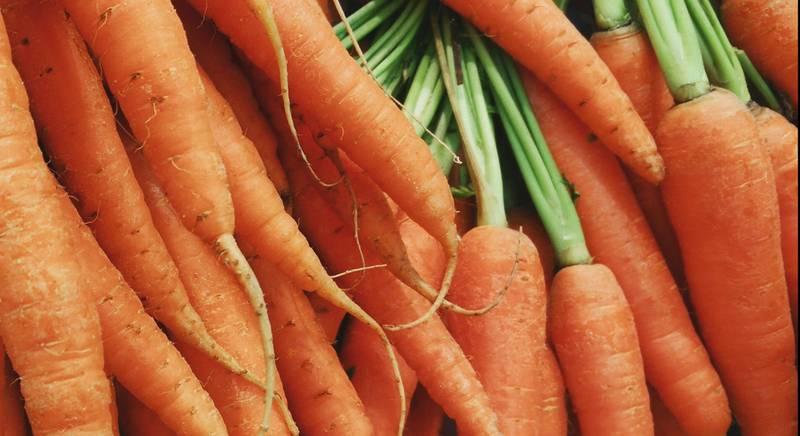 ТОП 10 среднеспелых сортов моркови