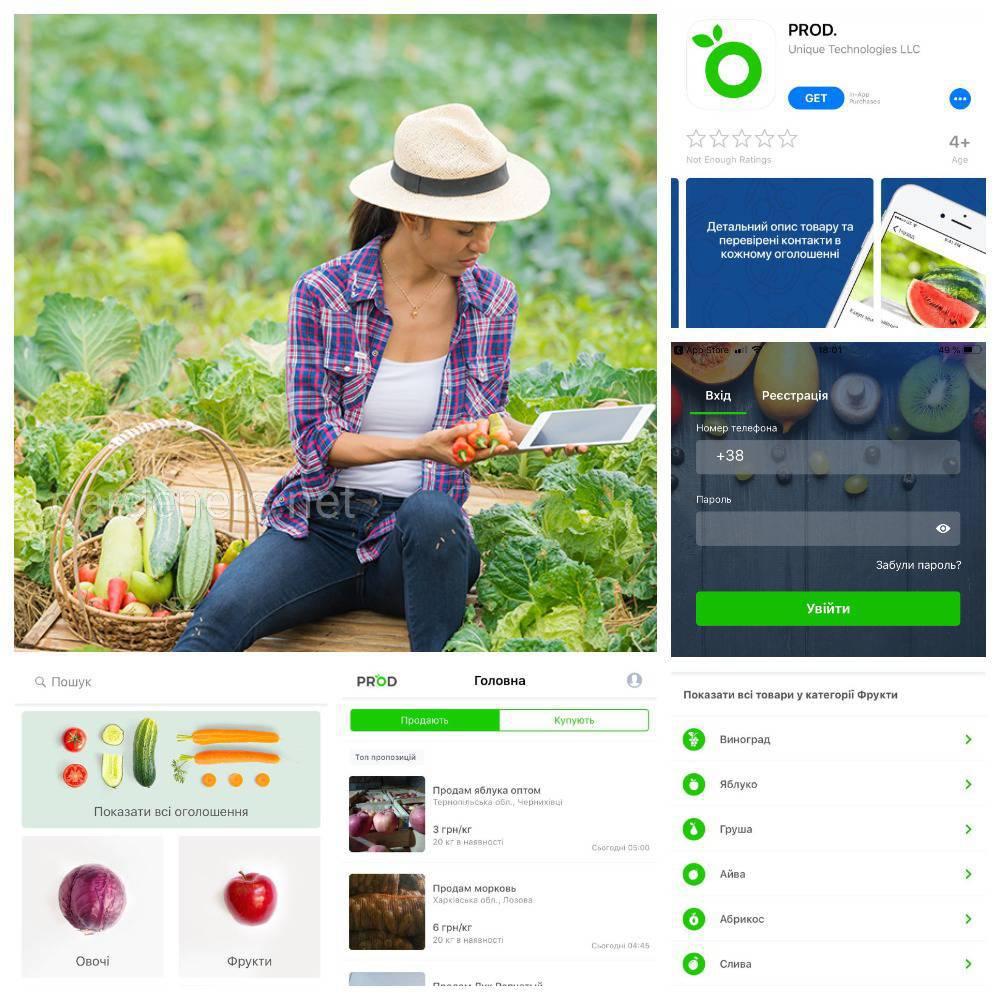 PROD це робота з базою цін на овочі та фрукти..jpg