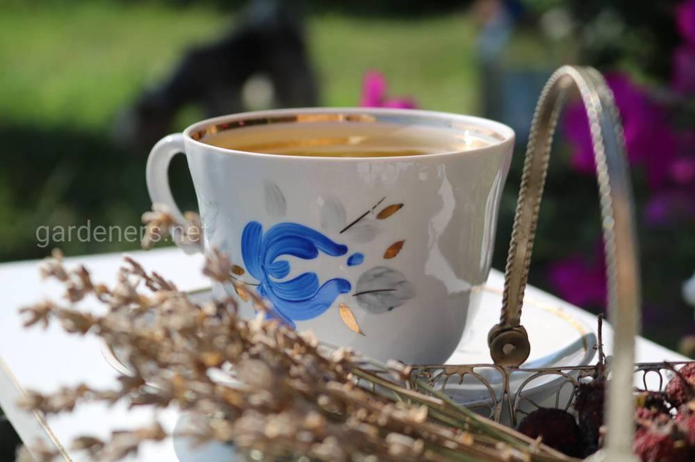 Желтый чай – редкий продукт