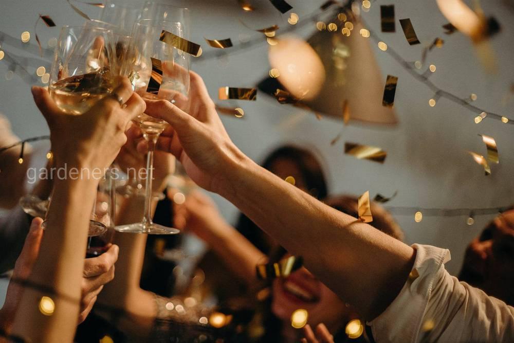 В чем встретишь Новый год