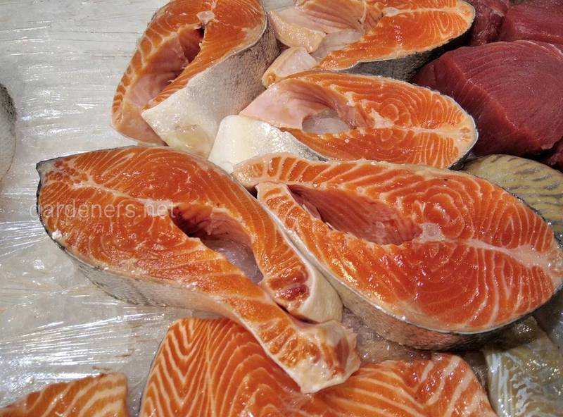 Роль рыбы и омега-3 жирных кислот в организме