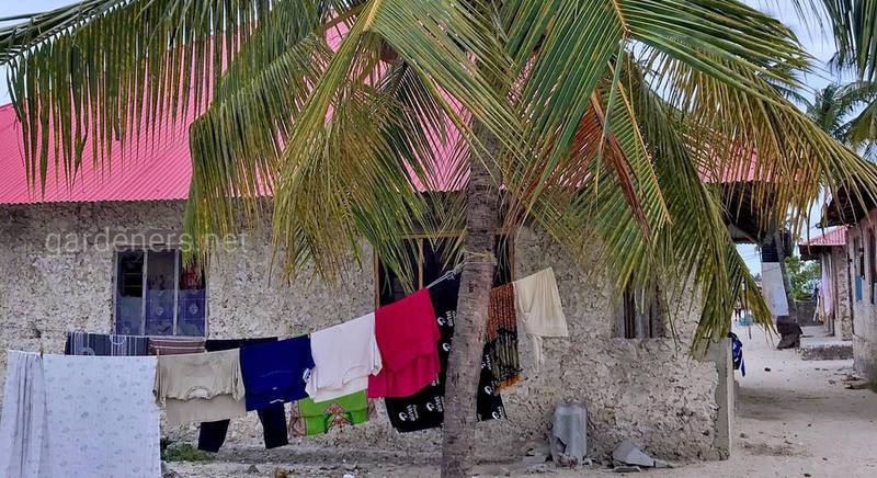Танзания. Заблудиться где нибудь в переулках «настоящей Африки»