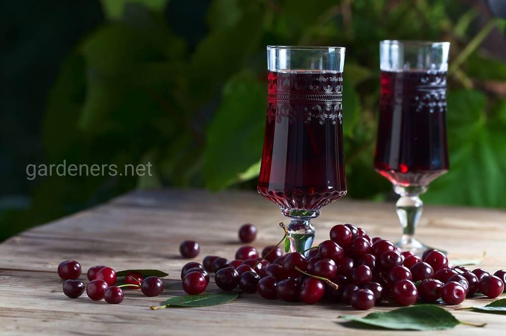 Украинская вишневка