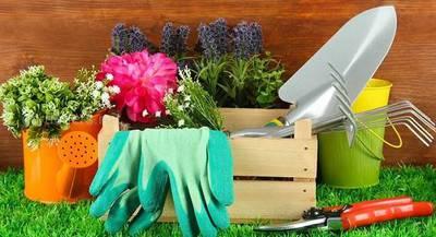 """Садовые инструменты """"Стриж"""" для минимальной обработки почвы"""