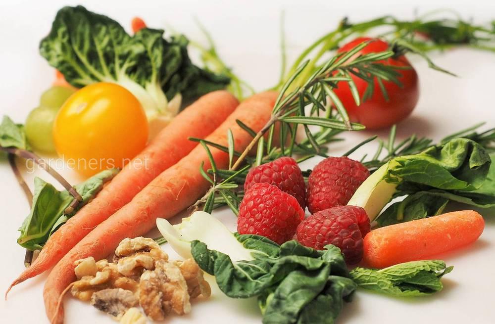 Список витамин для женского организма
