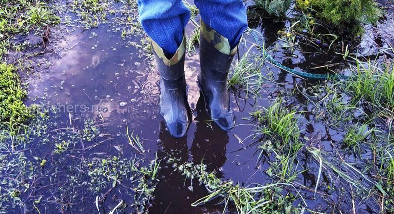 Спасаем затопленный по весне дачный участок. Что делать?