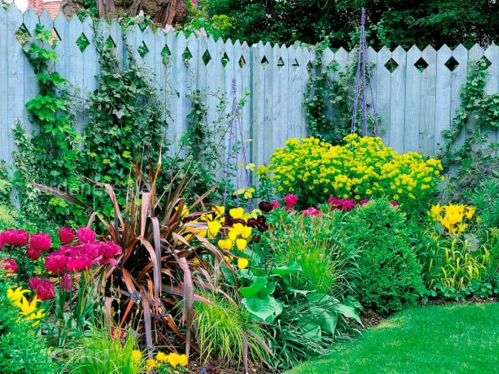 Правильное размещение растений на участке