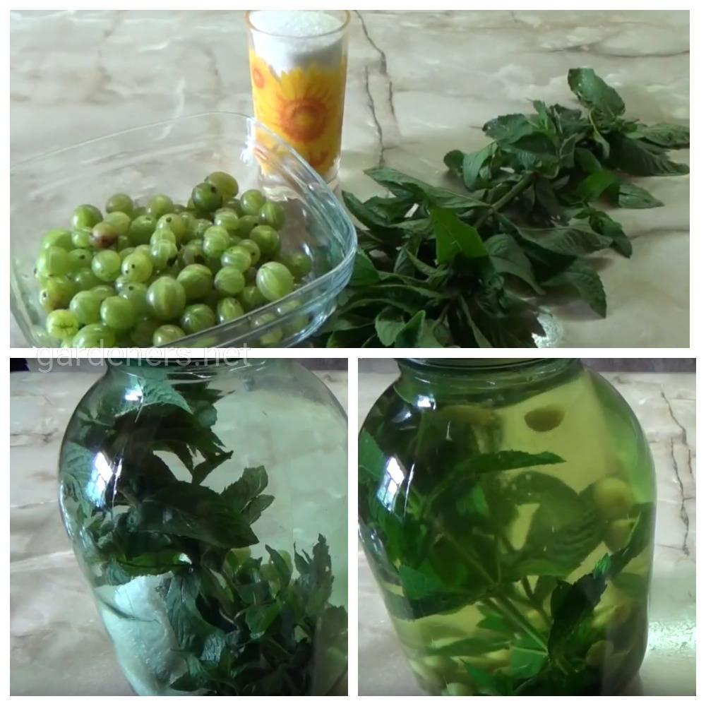 Напиток из крыжовника «Пикантное мохито»