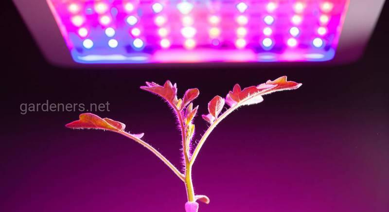 Делаем полочку для выращивания рассады с фито подсветкой