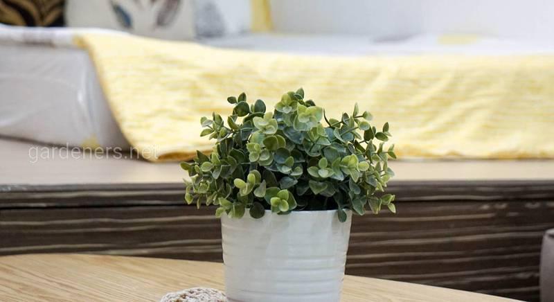 Кашпо для горшечных растений
