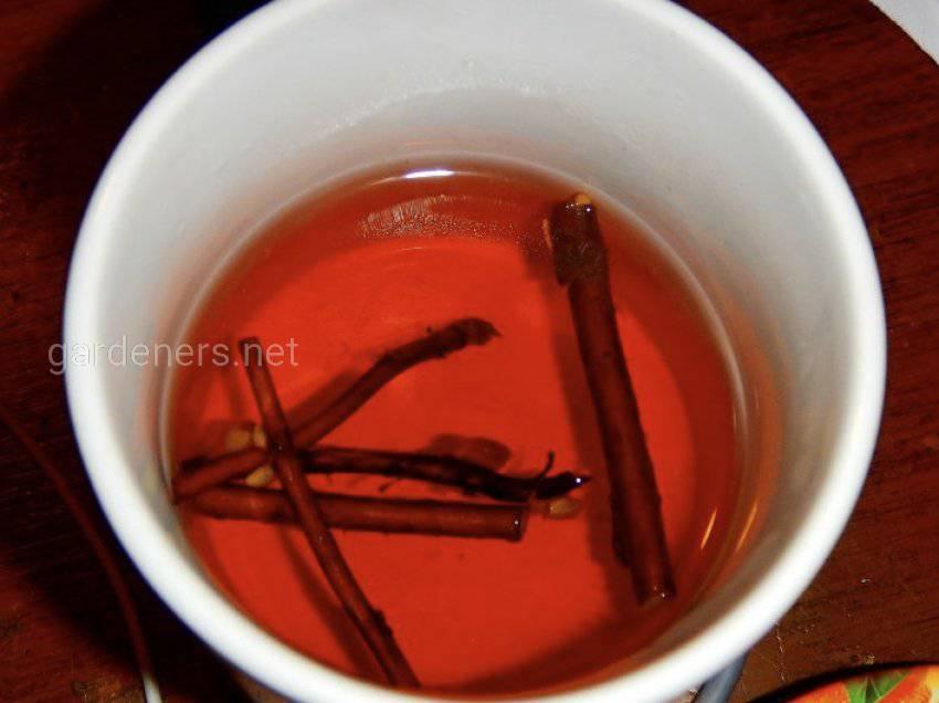 Чай из побегов вишни