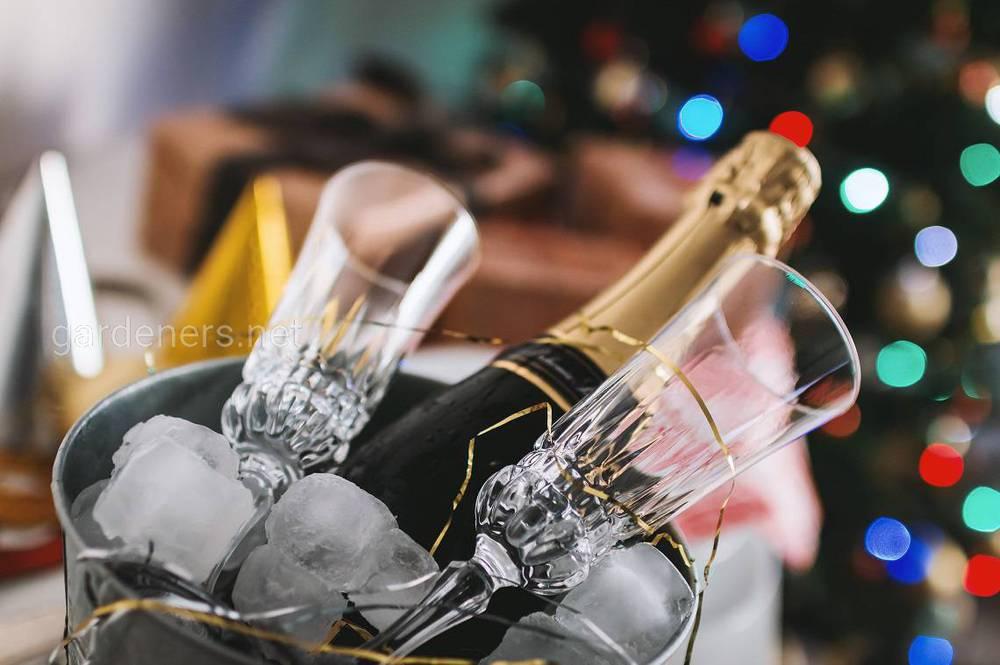 Походження шампанського