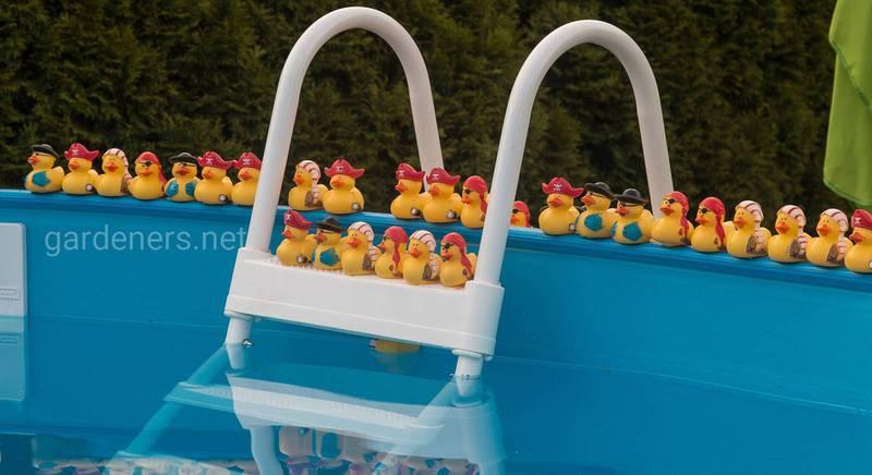 Выбираем бассейн для своего сада