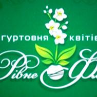 """Оптовик цветов """"Ровно Флора"""""""