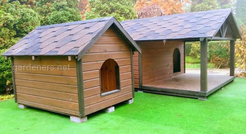 Домик для собаки: варианты будок