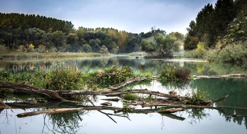Почему пересыхают реки
