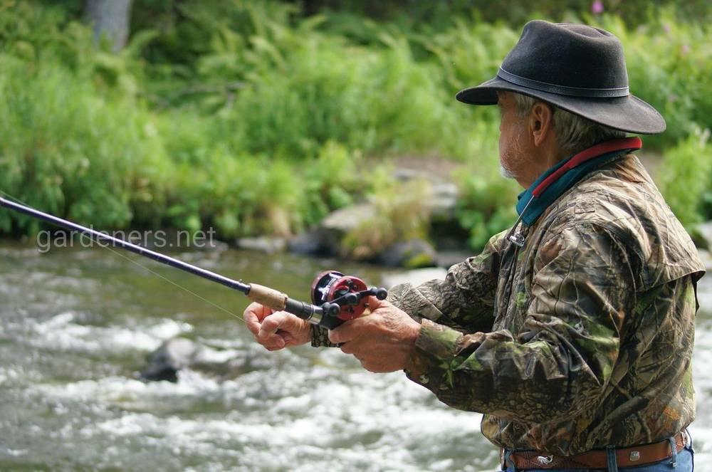Какую погоду лучше выбрать для рыбалки