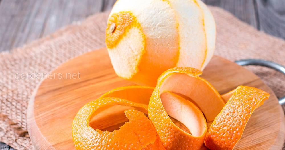 Использования апельсиновой кожуры