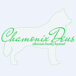 Питомник сибирских хаски Chamonix Deus
