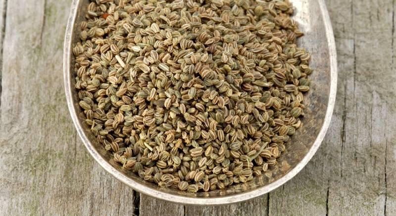 ТОП 10 полезных свойств семян сельдерея для здоровья