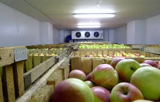 Системи зберігання фруктів